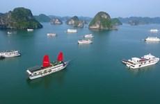 赴广宁省的游客人数逐渐恢复增长