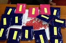 乂安省:抓获一名私藏3000粒合成毒品嫌疑人