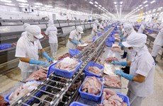 越南向企业加强有关《越南与欧盟自由贸易协定》内容的宣传力度