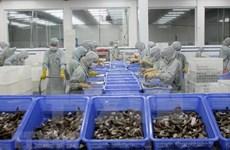 越南虾产业努力恢复虾类出口市场