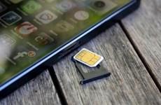 越南三家电信公司6月1日起停止发行新SIM卡