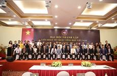 越南混合武术联合会正式成立