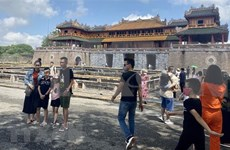 承天顺化省主动促进旅游业恢复
