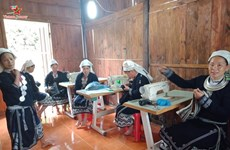 保护高平省钱瑶族妇女的土锦刺绣手工业