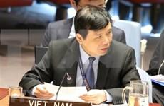 越南主持召开联合国安理会有关国际法院工作组会议
