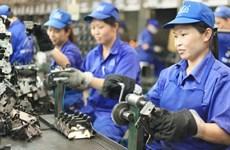 ILO对越南在消除强迫劳动方面所取得的进展予以高度评价