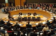 越南支持有关国家在起诉和审判严重国际罪行方面承担主要责任