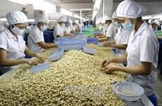 欧洲议员对EVFTA生效之后越南农产品面临的机会和挑战作出评价