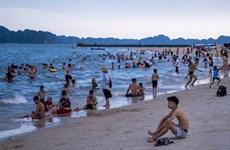 彭博:越南在恢复旅游方面取得显著成果