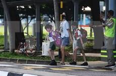 东南亚部分国家的新冠肺炎疫情形势:新加坡新增确诊病例中至少一半无症状