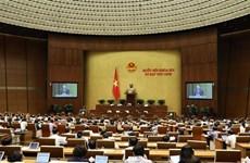 越南第十四届国会第九次会议:对2021年国会监督计划的决议进行表决