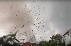飓风致永福省一木业厂房倒塌 3人死亡20人受伤