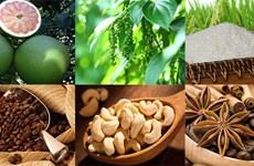 质量认证是越南农产品进军欧洲市场的金钥匙