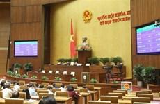 越南国会主席阮氏金银当选国家选举委员会主席
