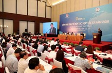 2020年合作经济、合作社论坛将于今年第三季度举行