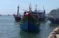 关于在黄沙海域的QNg96416TS号渔船事故案:越方要求中方调查核实并配合解决