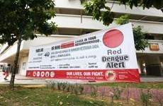 本周内新加坡感染登革热人数创新高