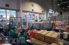 在俄越资企业在新冠肺炎疫情巨浪中站稳脚跟