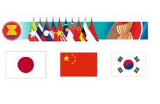 东盟与中日韩增强清迈倡议多边化协议效果