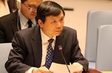 越南出席联合国安理会有关中非局势的辩论会