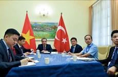 越南与土耳其外交部领导就两国新冠肺炎疫情下促进关系的措施展开讨论