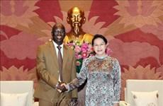 国会主席阮氏金银会见世界银行驻越代表处首席代表奥斯曼·迪奥