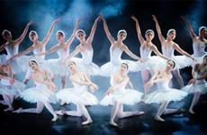 《翘传》芭蕾舞剧颇受胡志明市观众的欢迎