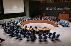联合国安理会通过由越南起草关于核查国际法院未决案件解决机制活动的决议