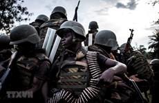 越南与联合国:安理会寻求应对刚果民族共和国东部安全挑战的解决方案