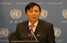 越南呼吁推动阿富汗和平进程