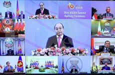 2020东盟轮值主席国年:越南的奉献精神与责任担当
