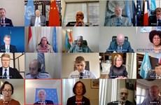 越南呼吁国际社会向叙利亚提供支持