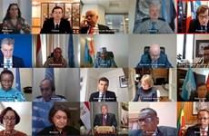 联合国安理会讨论 埃塞俄比亚大复兴大坝问题