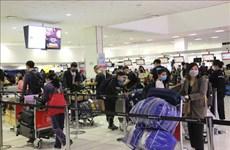 越南迎接350名旅外公民回国