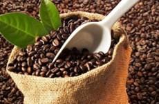 越南咖啡应注重开拓北非市场