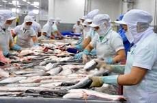 东盟是越南的潜在出口市场