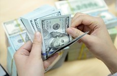 7月6日越盾对美元汇率中间价上调3越盾