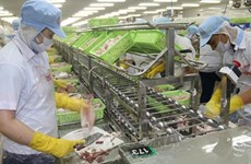 越南前江省保持出口增长势头