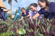 北宁省妇女们携手保护环境 争创美好社区