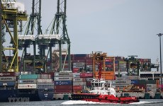 日本经济研究中心预测5个东盟国家和印度的经济前景