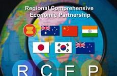 印尼企业相信RCEP协定能够促进多边投资和贸易往来