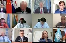 联合国安理会就西非和萨赫勒地区问题进行视频讨论   越南支持预防性外交