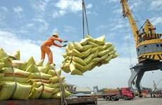 越南农产品价格一周回顾:稻谷和大米价格小幅上涨