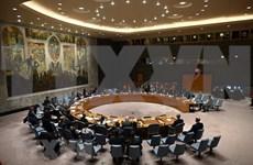 联合国安理会通过有关促进青年在维持和平与安全中的角色的决议