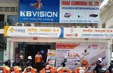 旅柬越南企业积极克服困难  推动生产稳步前进