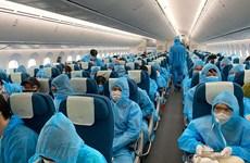 越航提醒越南公民不要购买来历不明的回国机票