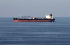 越南呼吁也门胡塞武装组织与联合国合作解决油轮问题