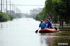 越南向中国援助10万美元用于灾后重建工作