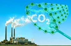 应对气候变化:形成与发展越南碳市场