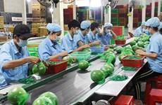 越南槟椥省为中小型企业对接资金